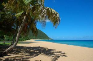 Guadeloupe - vanille plage grande anse