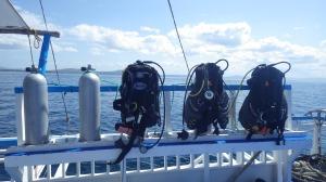 Philippines Prana divers Bohol
