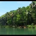 Nuts Huts Loboc River Bohol Philippines (13)