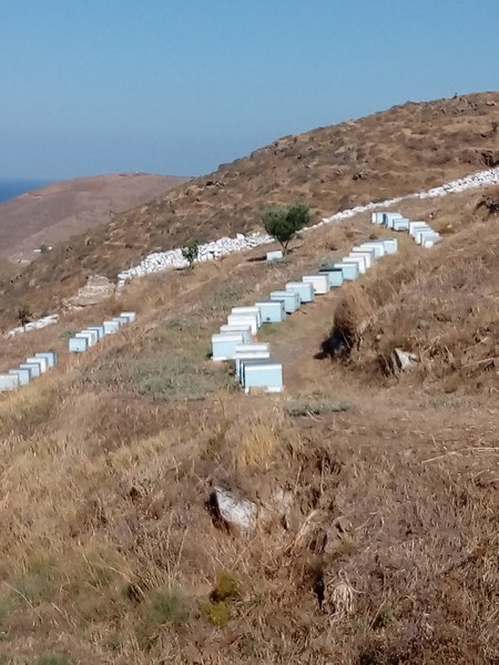 Grece Cyclades Kythnos Chrisvoyages
